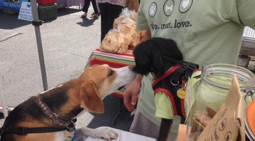 friandises pour chiens a ingredient unique