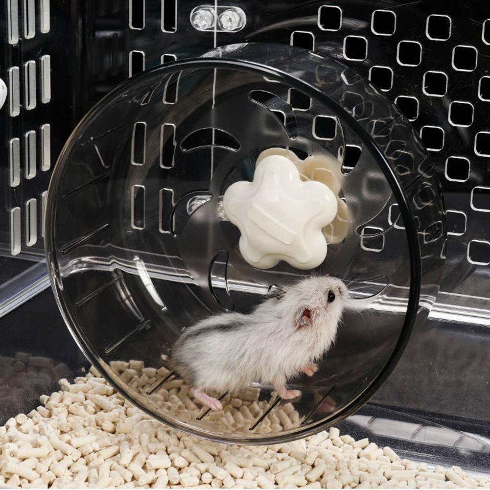 Pourquoi faut-il une roue pour un hamster
