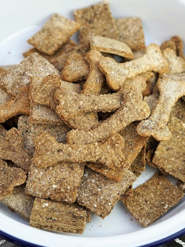 biscuits aux sardine bio pour chien